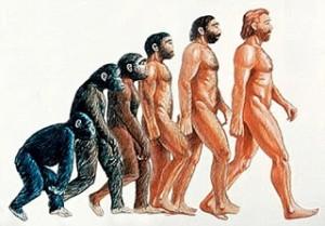 Evolucion_del_hombre